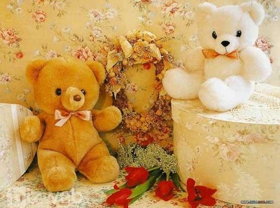 Các chú gấu bông cỡ lớn mang đến vẻ ngoài dễ thương, được phái nữ yêu thích